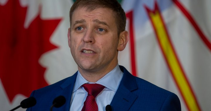 N.L. NDP challenge election results alleging voting irregularities – National